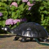 Schildpad gegoten met tuinslang